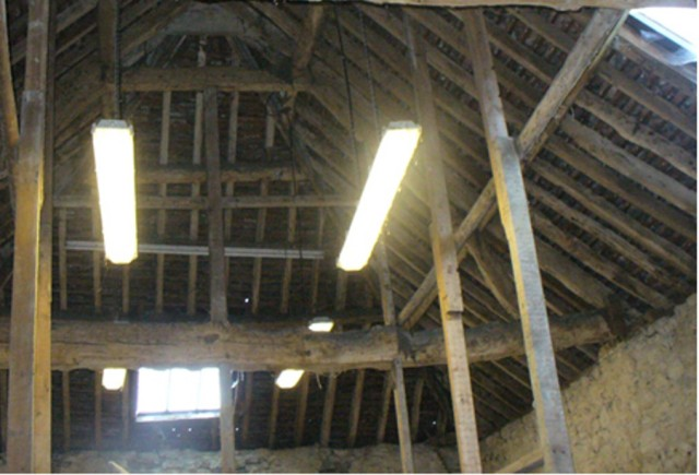 Last chance to see - Bury Knowle Barn's magnificent roof space - Soon to be destroyed