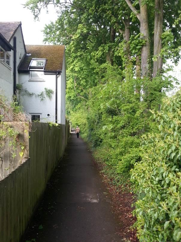 Cuckoo Lane - Woodland's Road