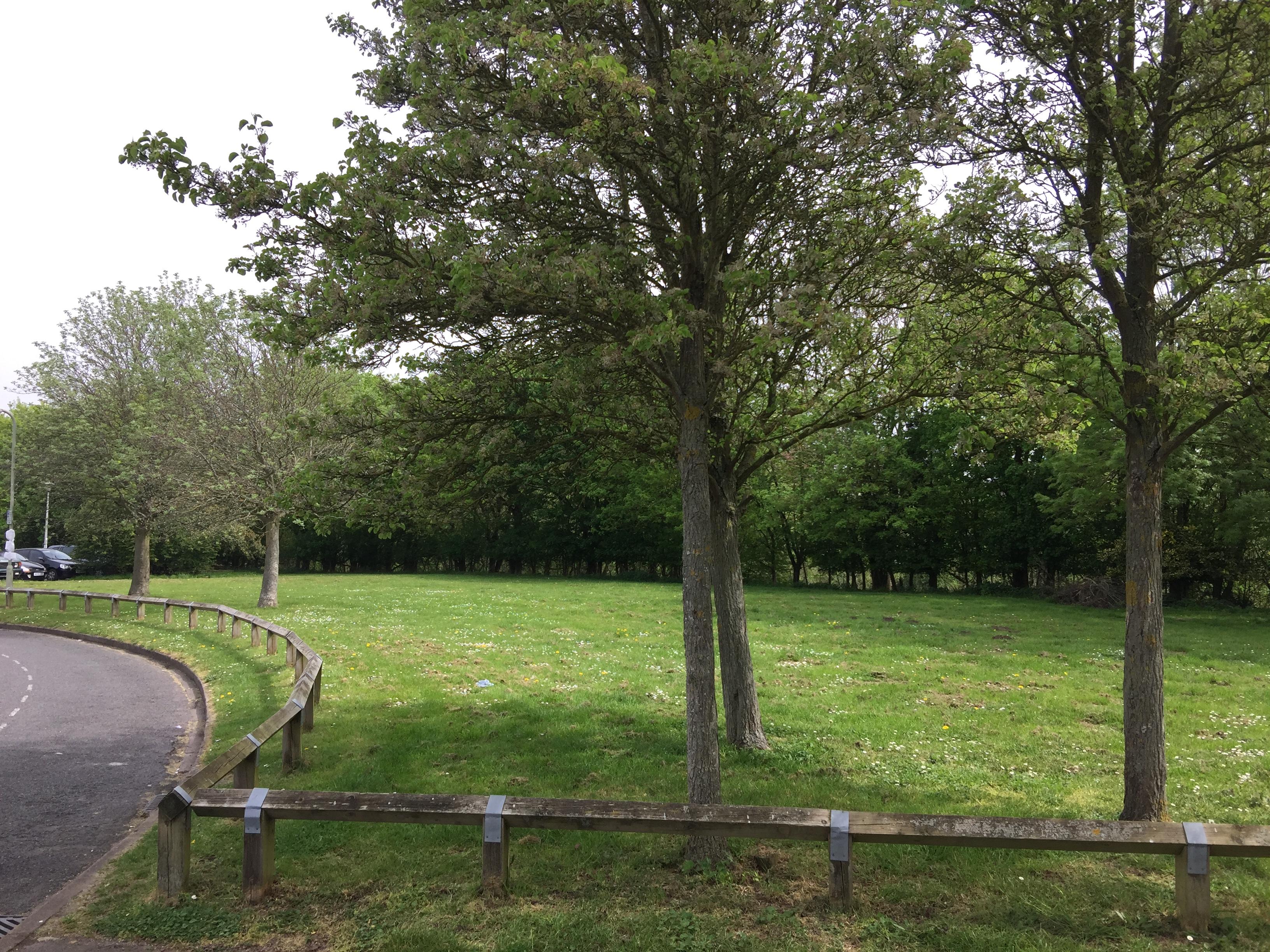 Warren Meadow Development Site – Path follows The Line of Trees, Lye Valley Beyond