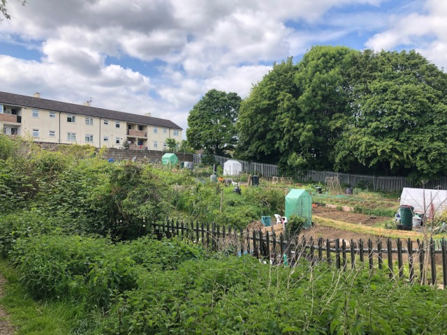 Lye_U_Allotments_side_small