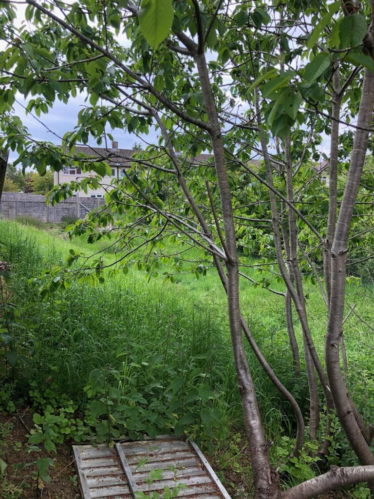 Lye Valley Headington Heritage